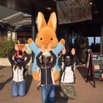 兵庫県三田市 うわのそら と六甲山ツーリング