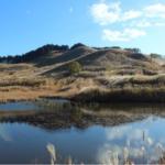 絶景!兵庫県砥峰高原、一面のススキ