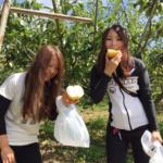 和歌山県の名山農園へ梨狩りツーリング
